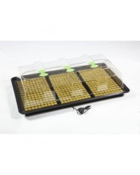 X-Stream Heat Propagator Large